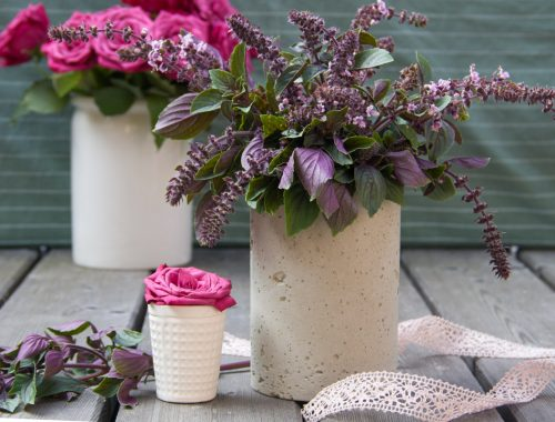 Selbstgemachte Betonvase mit Strauchbasilikum, kleine Vase mit Rose